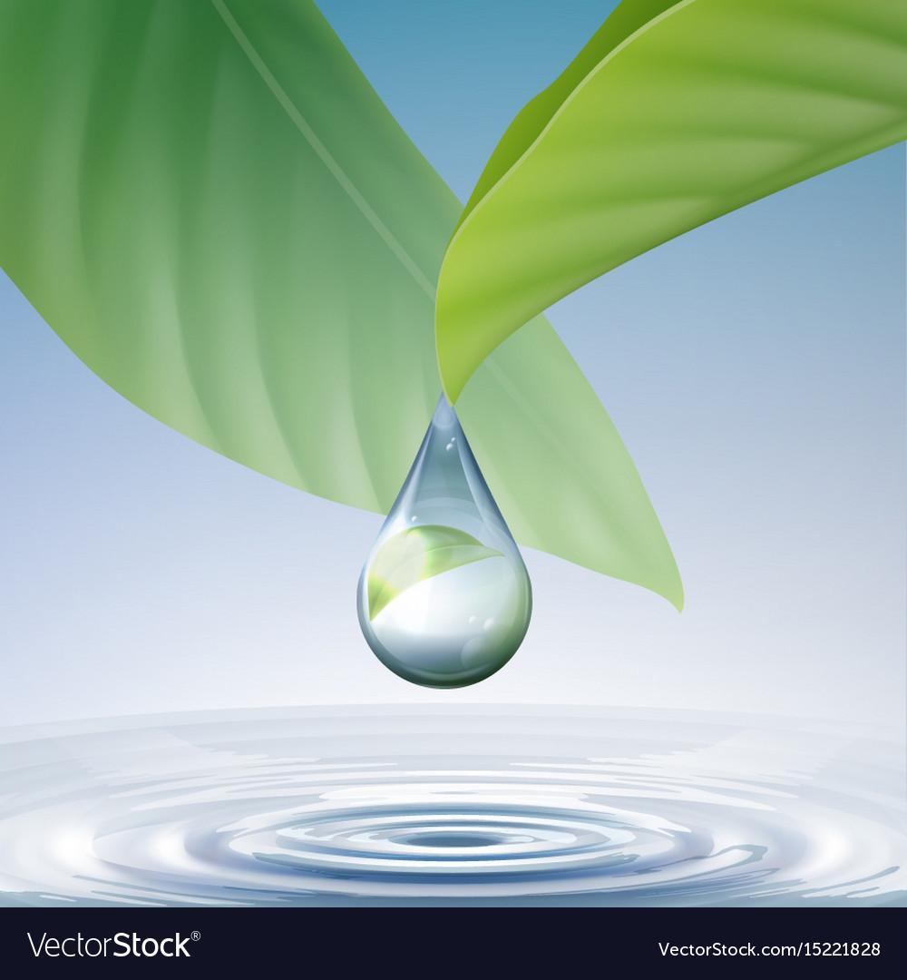 Shiny water drop