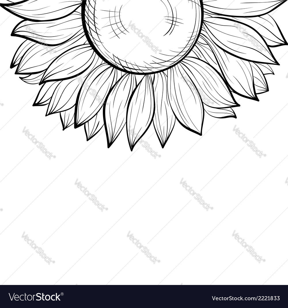 black and white background with a floral border vector image