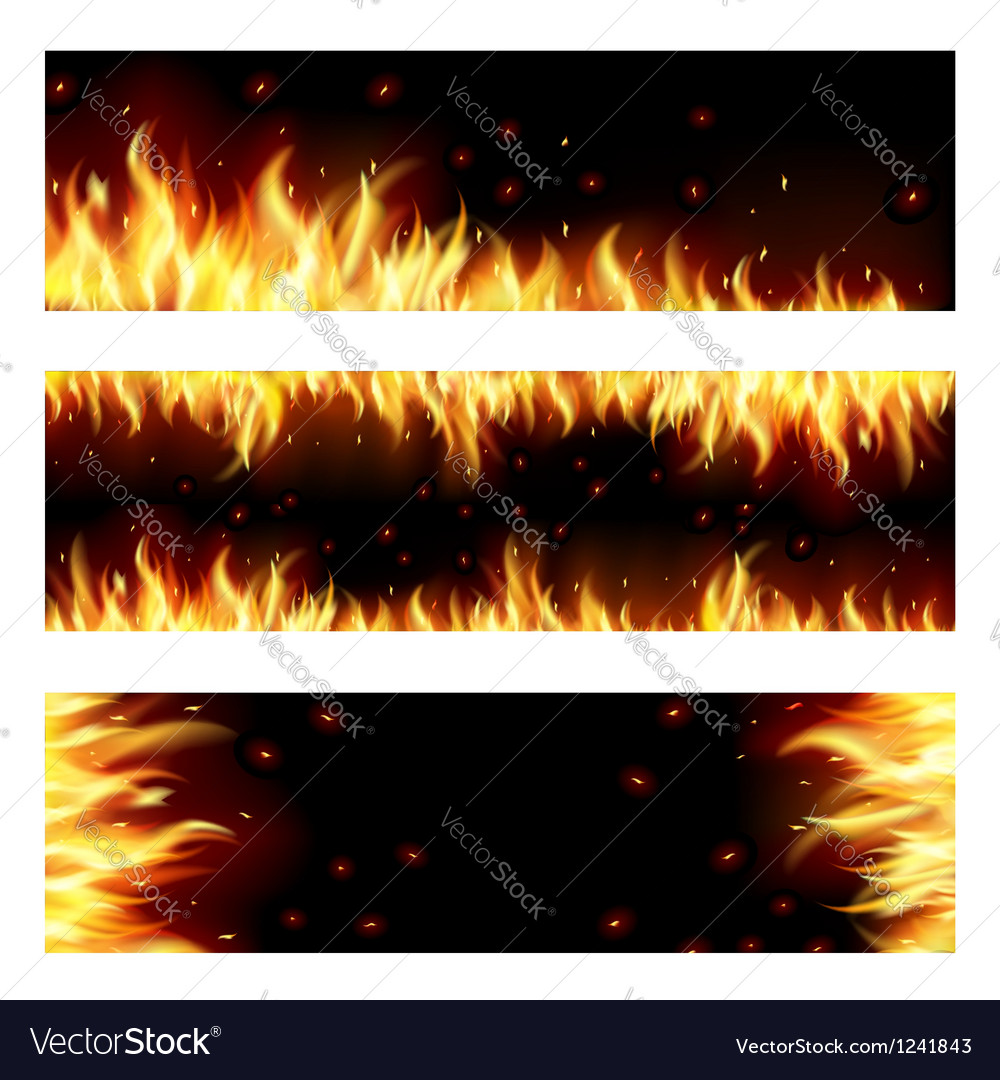 Flame vector image
