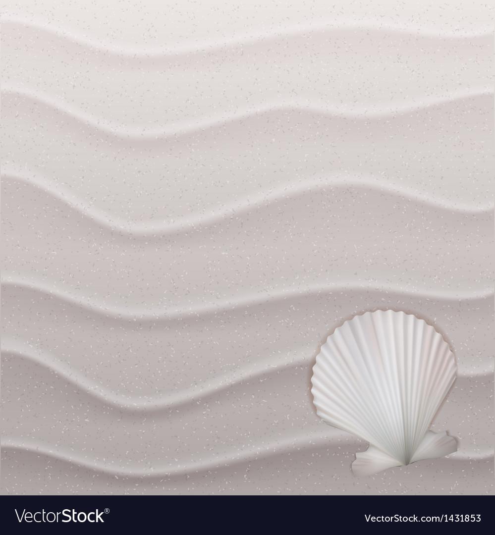 Marine background with seashell on sand