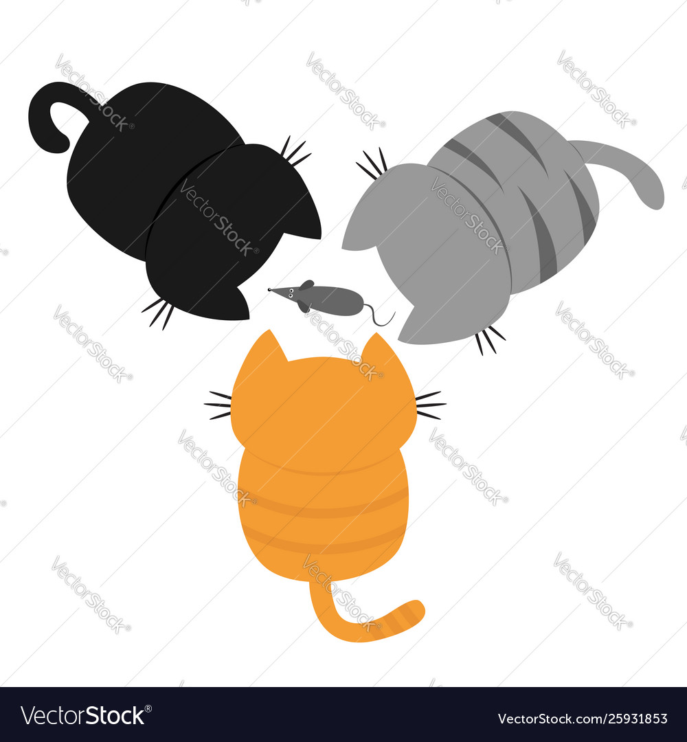 Three kittens looking at mouse back and tail top