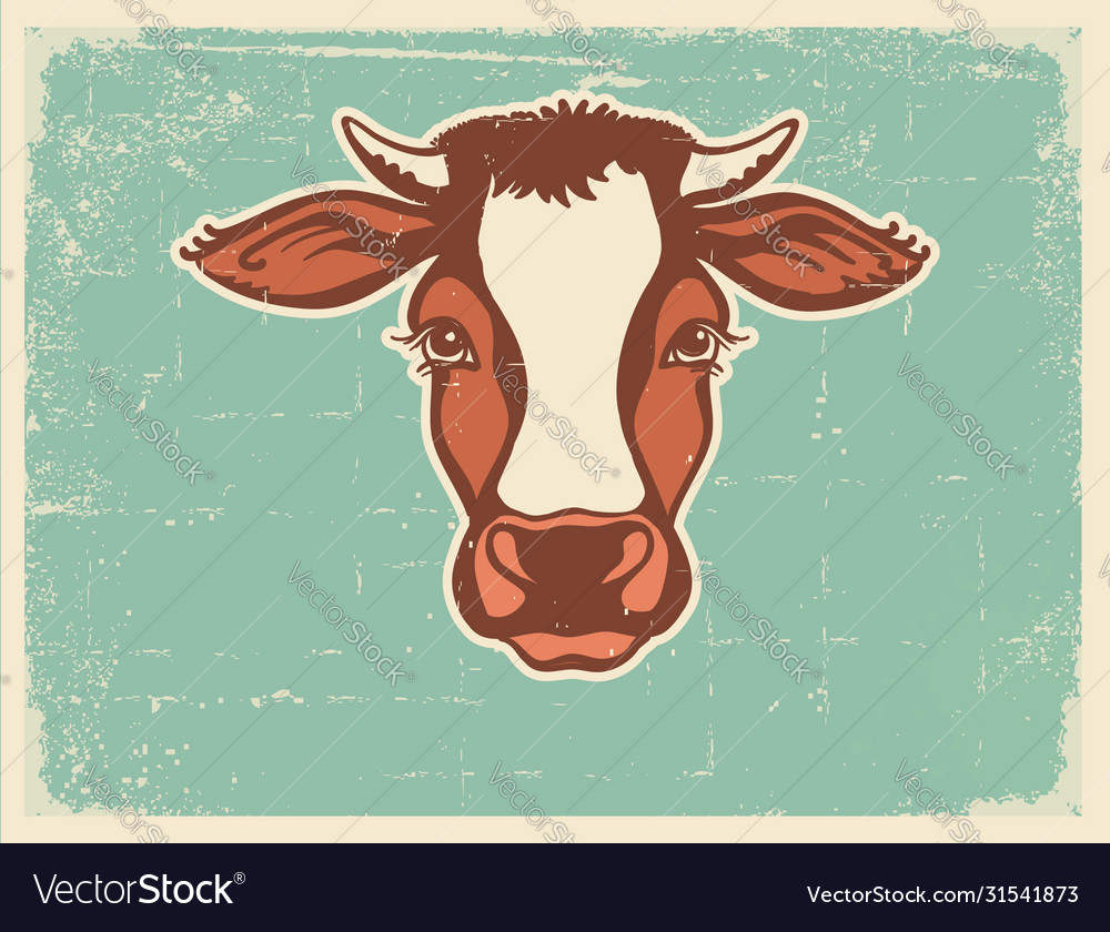 Cow head farm animal vintage poster of