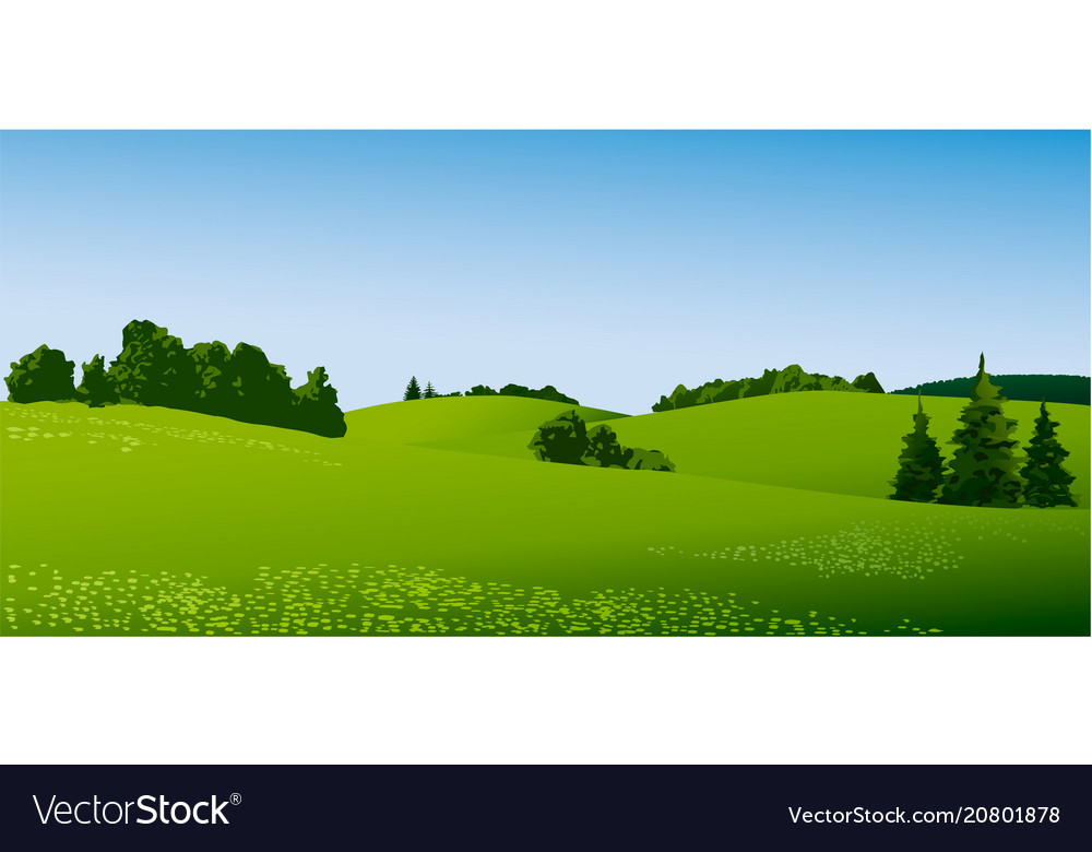 Rural landscape with green fields vector image