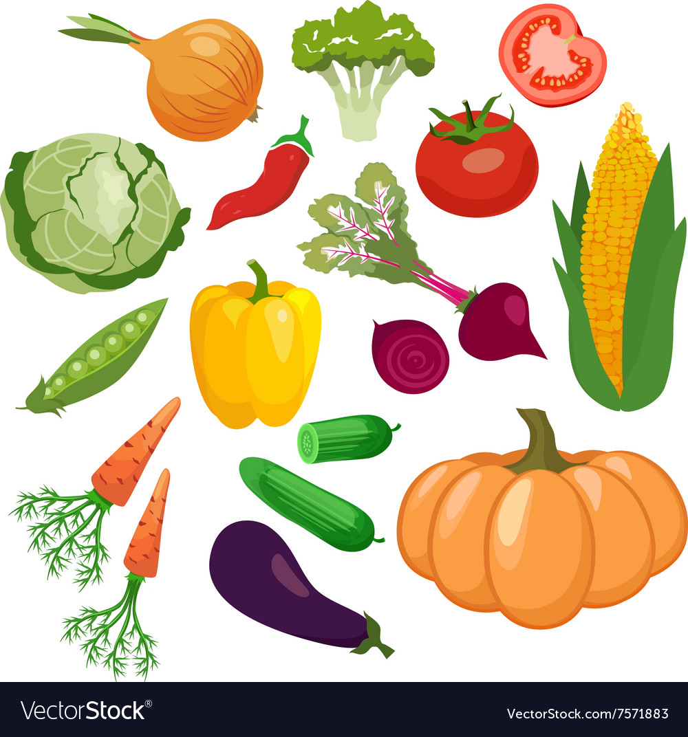 Vegetables icons set isolated on white background