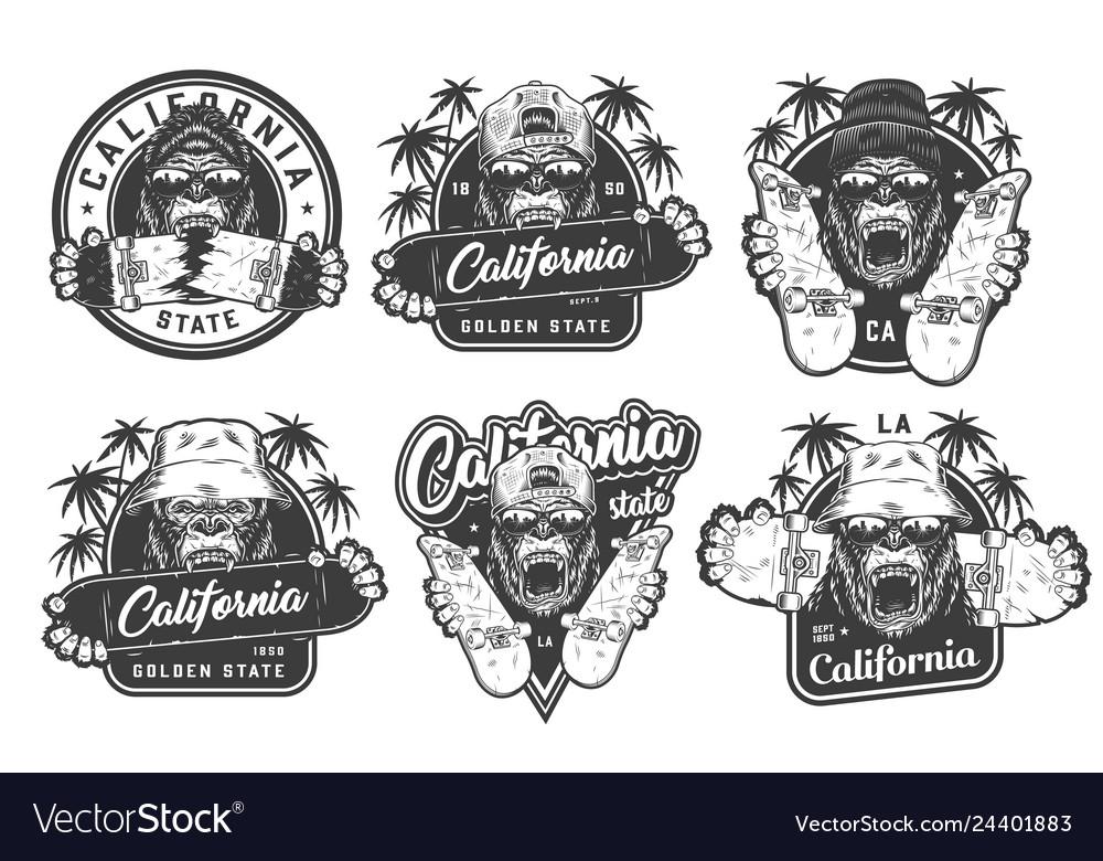 Vintage monochrome summer skateboarding labels