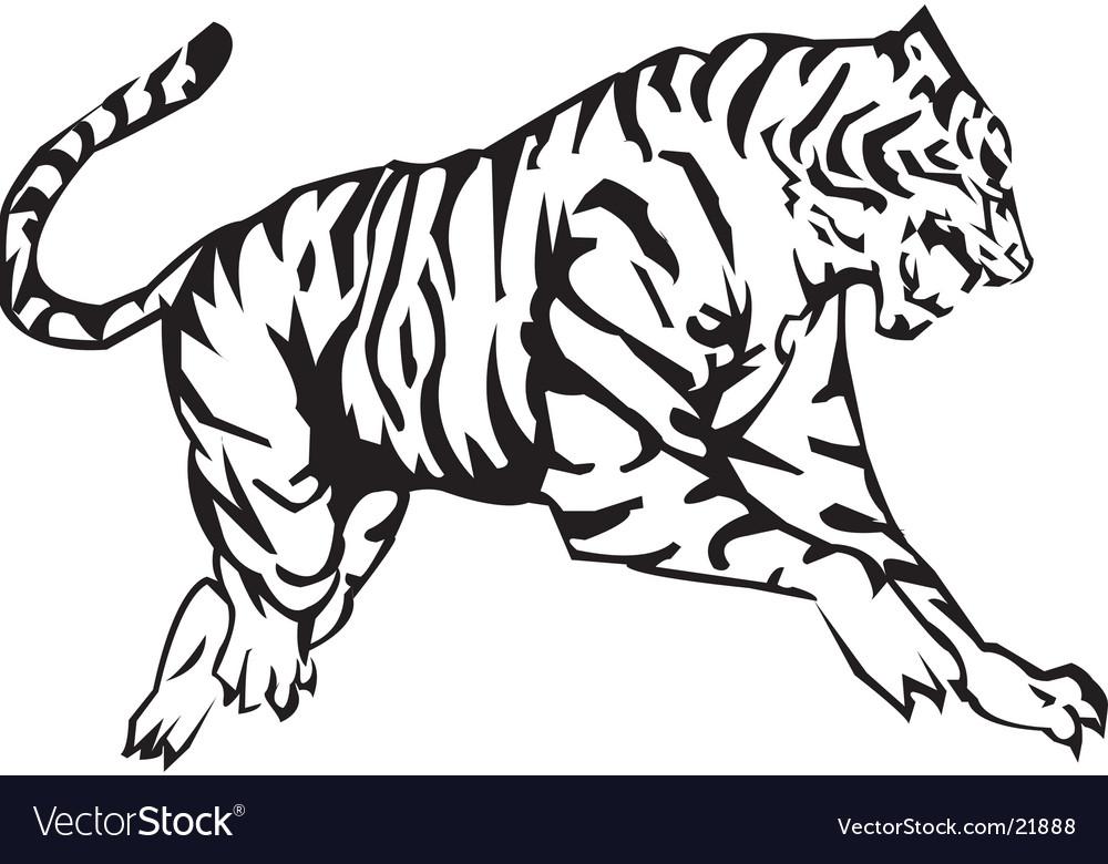 tiger royalty free vector image vectorstock
