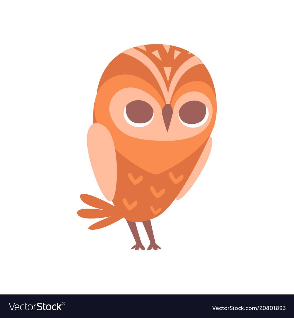 Cute funny cartoon owlet bird character