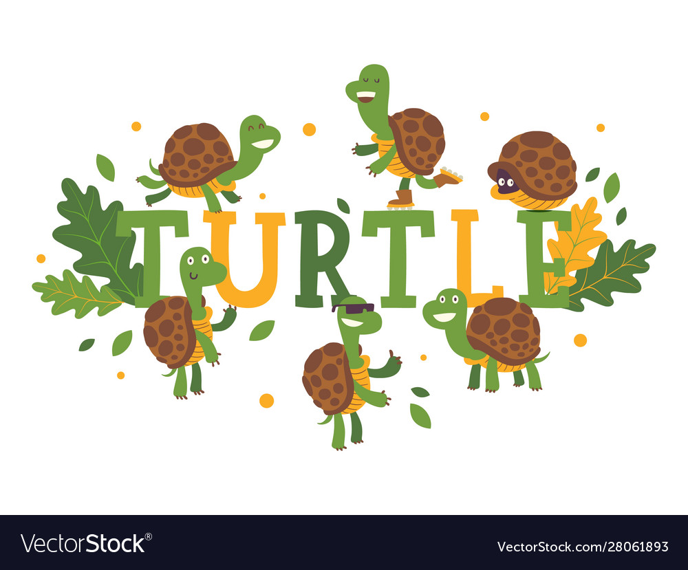 Turtle cartoon character on typography background