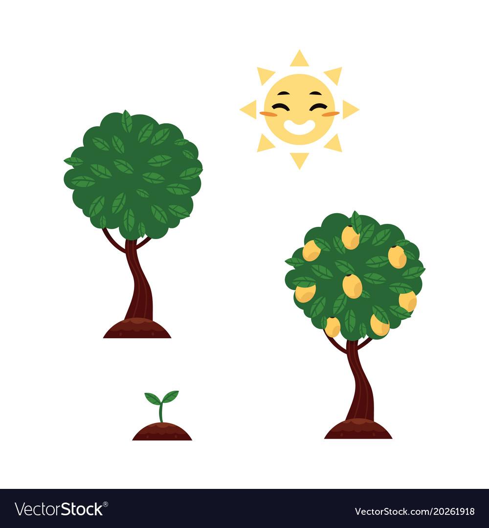 Flat tree planting stages symbols set