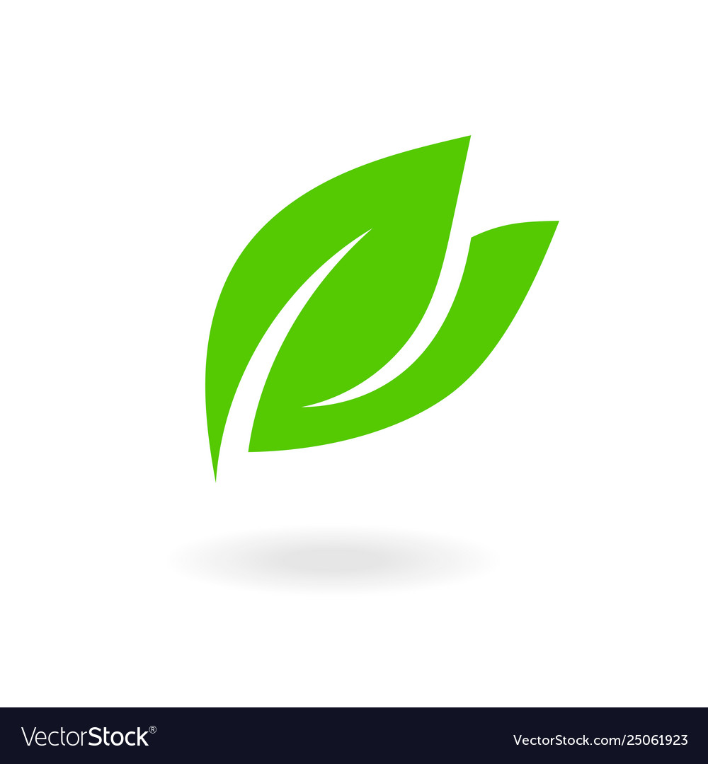Green leaf sign flat leaves icons bio plant and