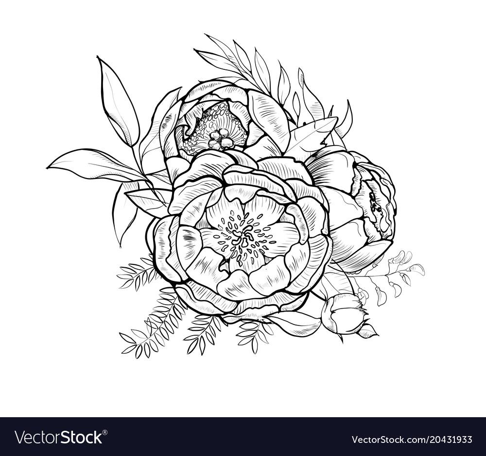 Bouquet of peony element of design
