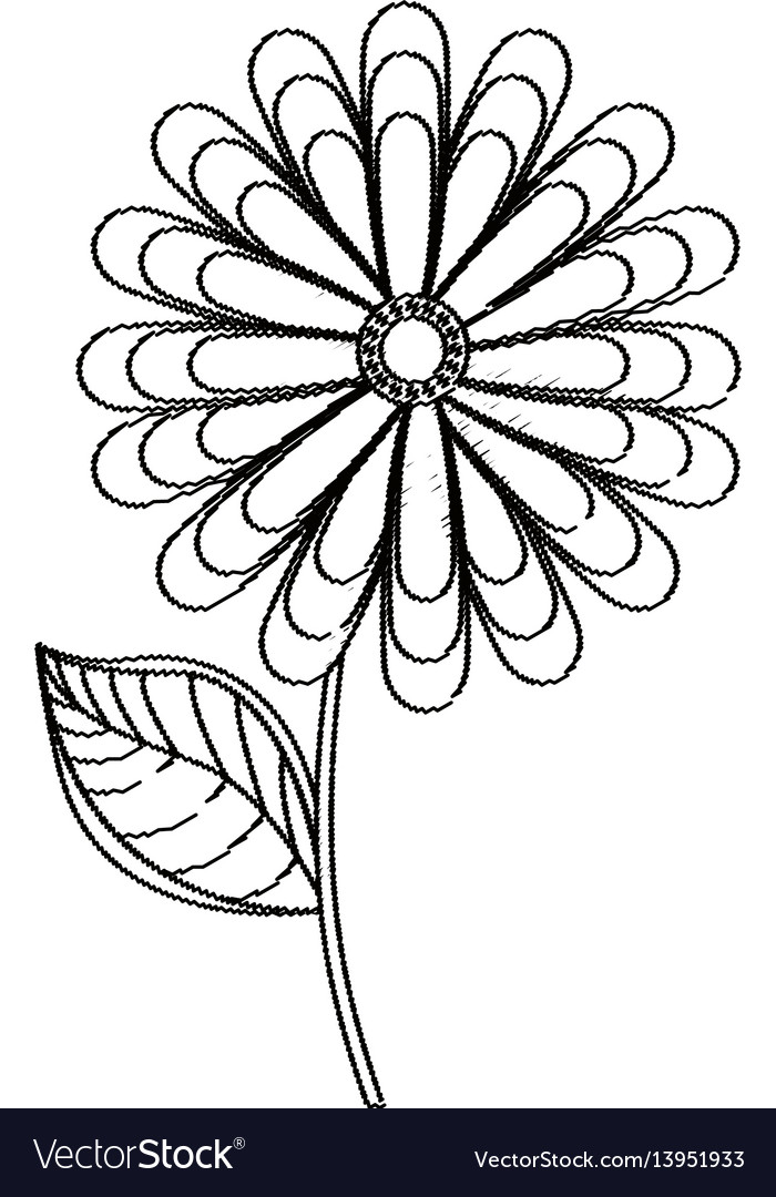 Flower spring season sketch vector image