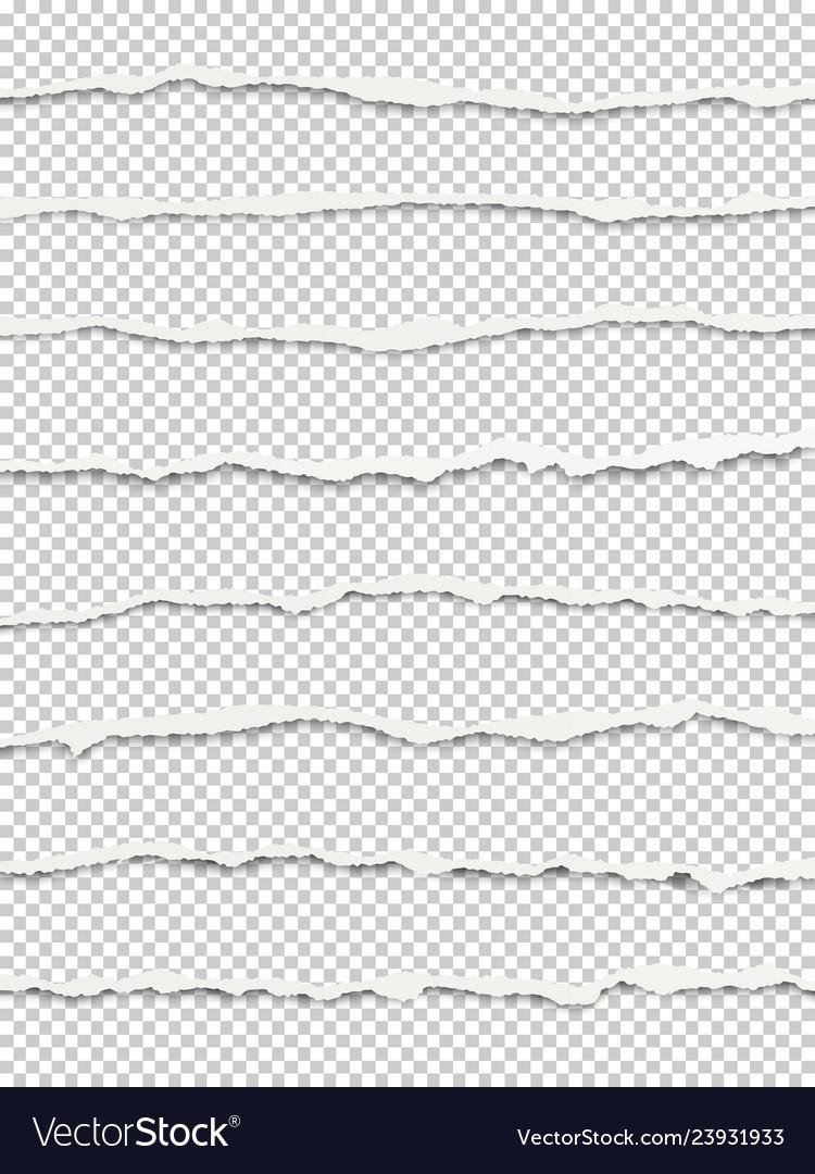 Oblong torn transparent paper wisps