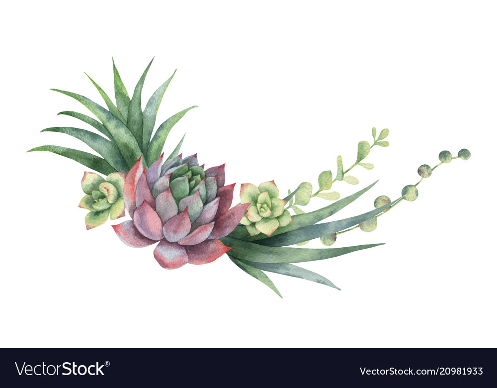 Watercolor wreath cacti and succulent