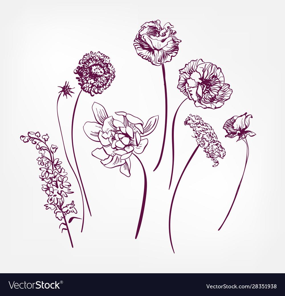 Engraved design elements sketch flower decorative