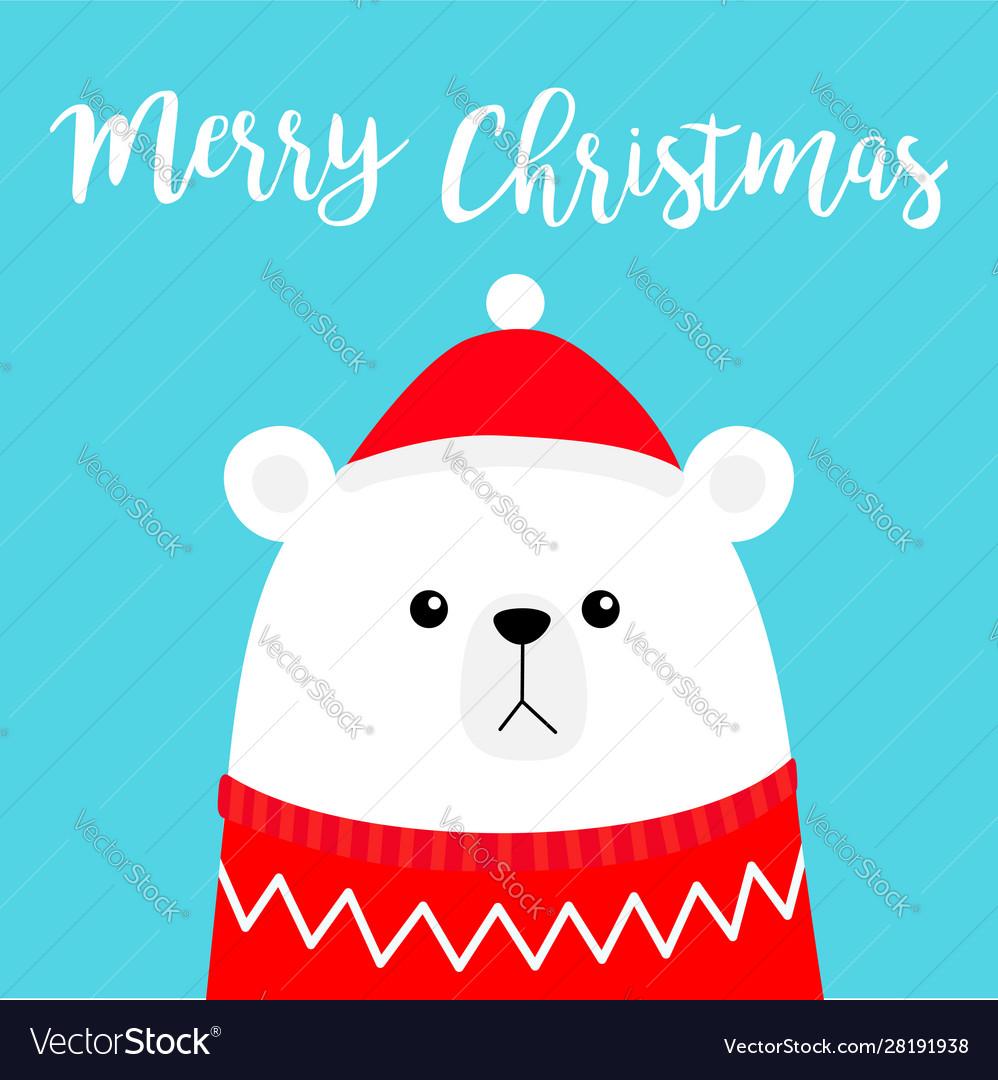 Merry christmas polar white bear cub head face