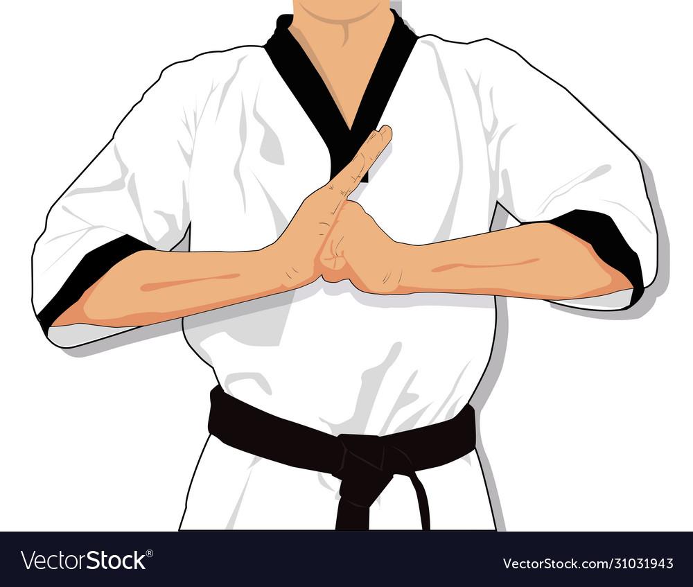 Taekwondo Martial Arts Clipart Cartoon Royalty Free Vector