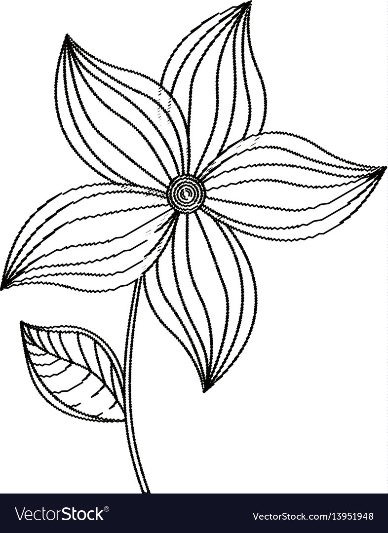 Flower ornament decoration sketch