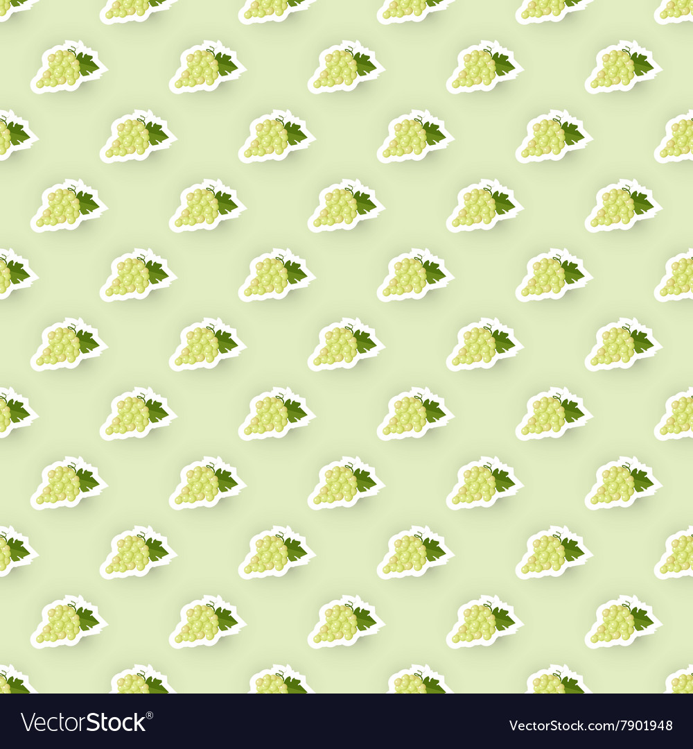 Pattern Background with Grape vector image
