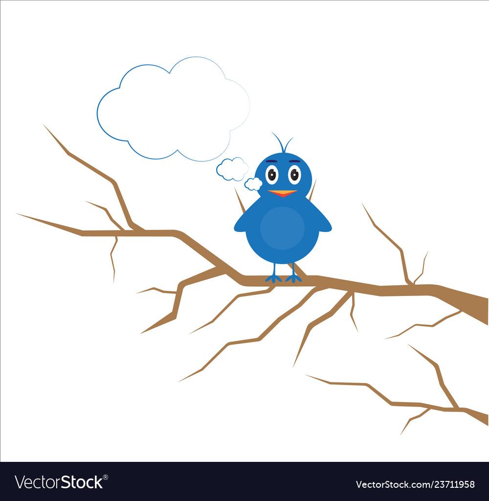 Bird for kid