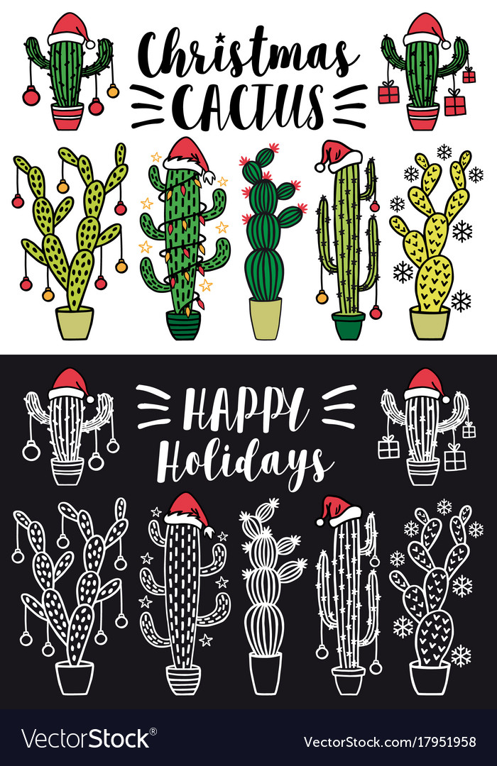 Christmas cactus set christmas cactus set