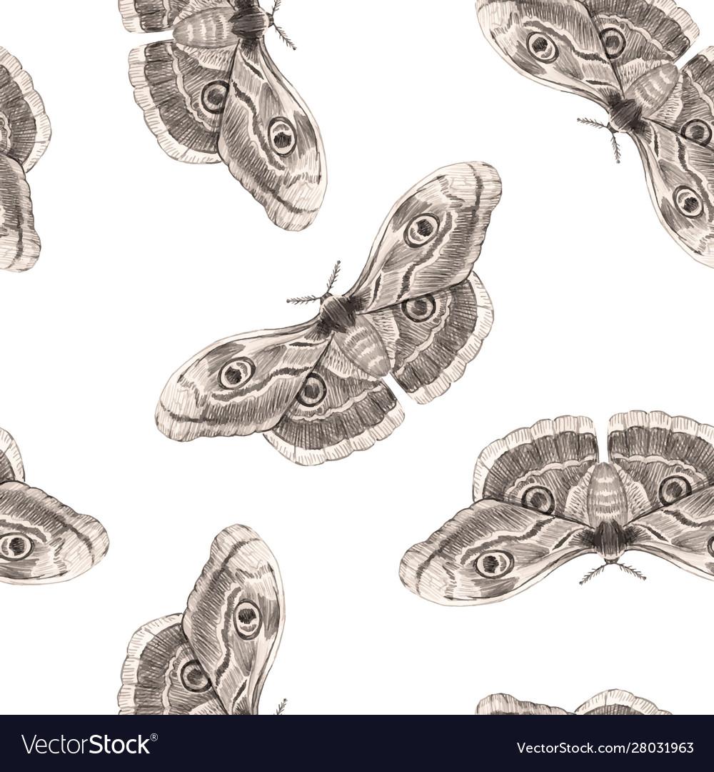 Beautiful moth butterfly seamless pattern