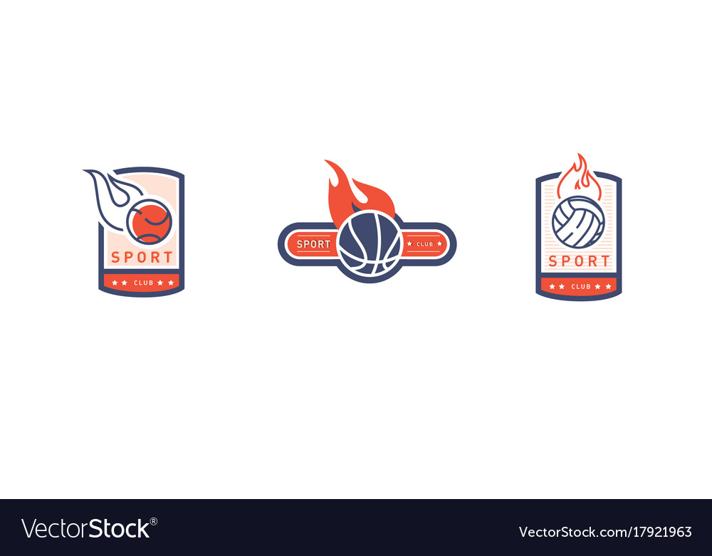 Creative Vintage Logo On A Sports Theme A Ball In Vector Image