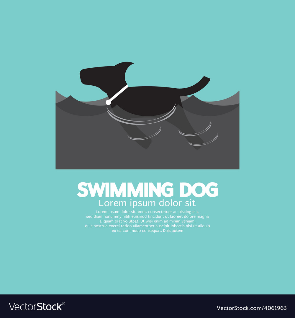 Swimming Dog In The Wave vector image