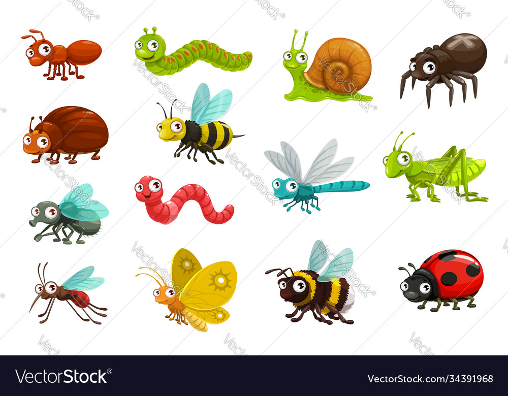 Cute bugs and insects cartoon characters