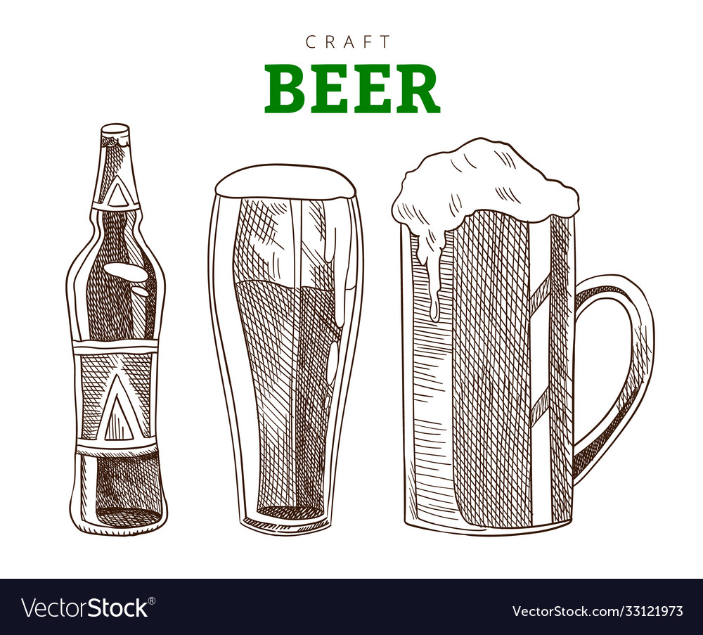 Beer mug glass and bottle craft beer party