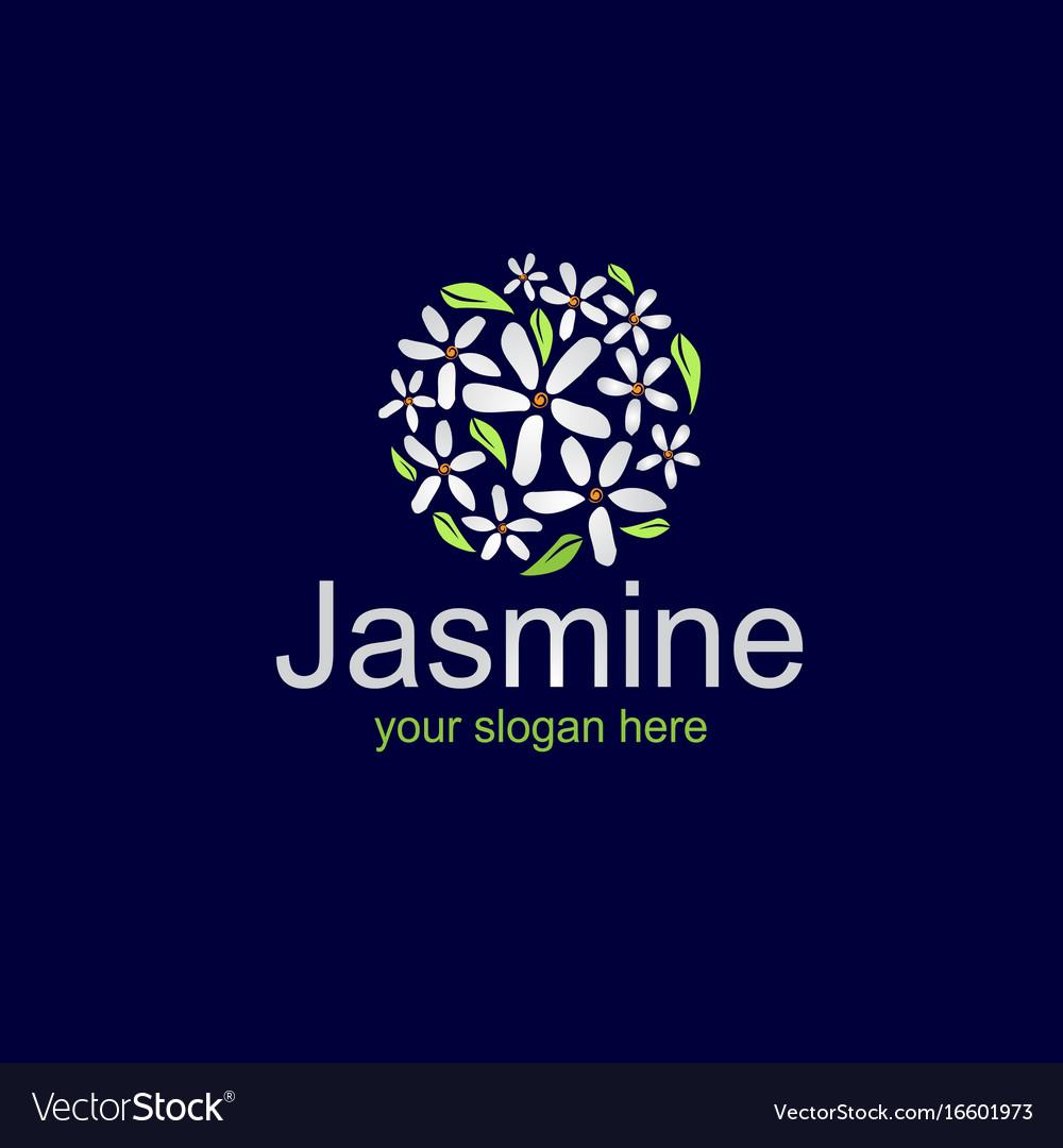 Elegant jasmine logo vector image