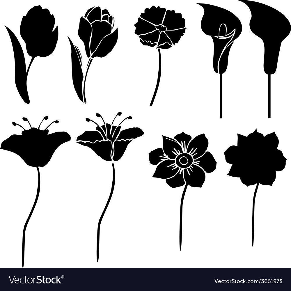 Silhouettes of flowers 3