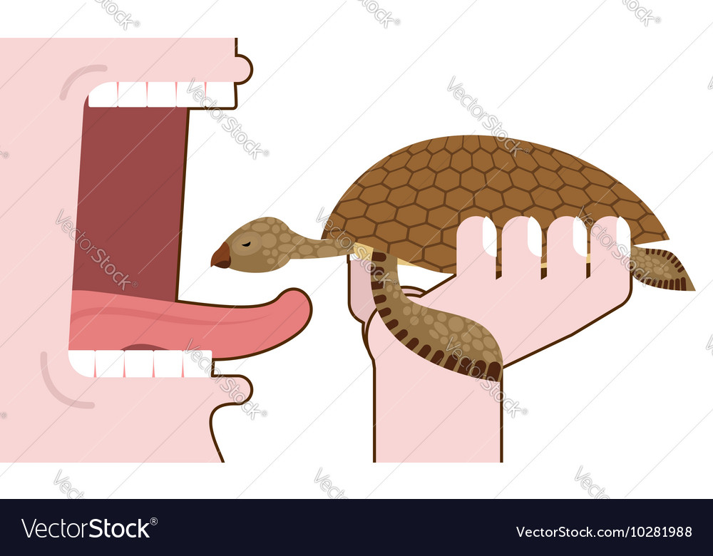 Man eating turtle Destruction of amphibians vector image