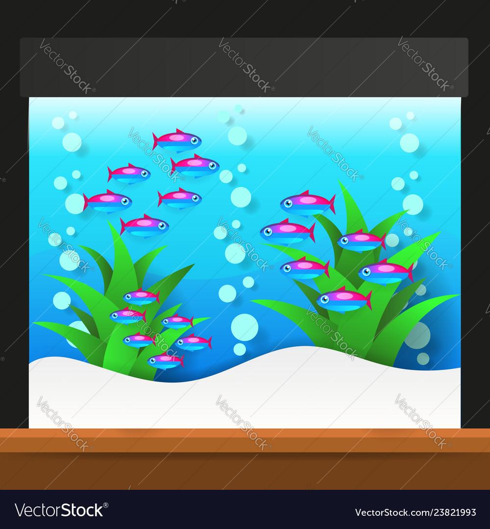 Cartoon freshwater fishes in tank aquarium