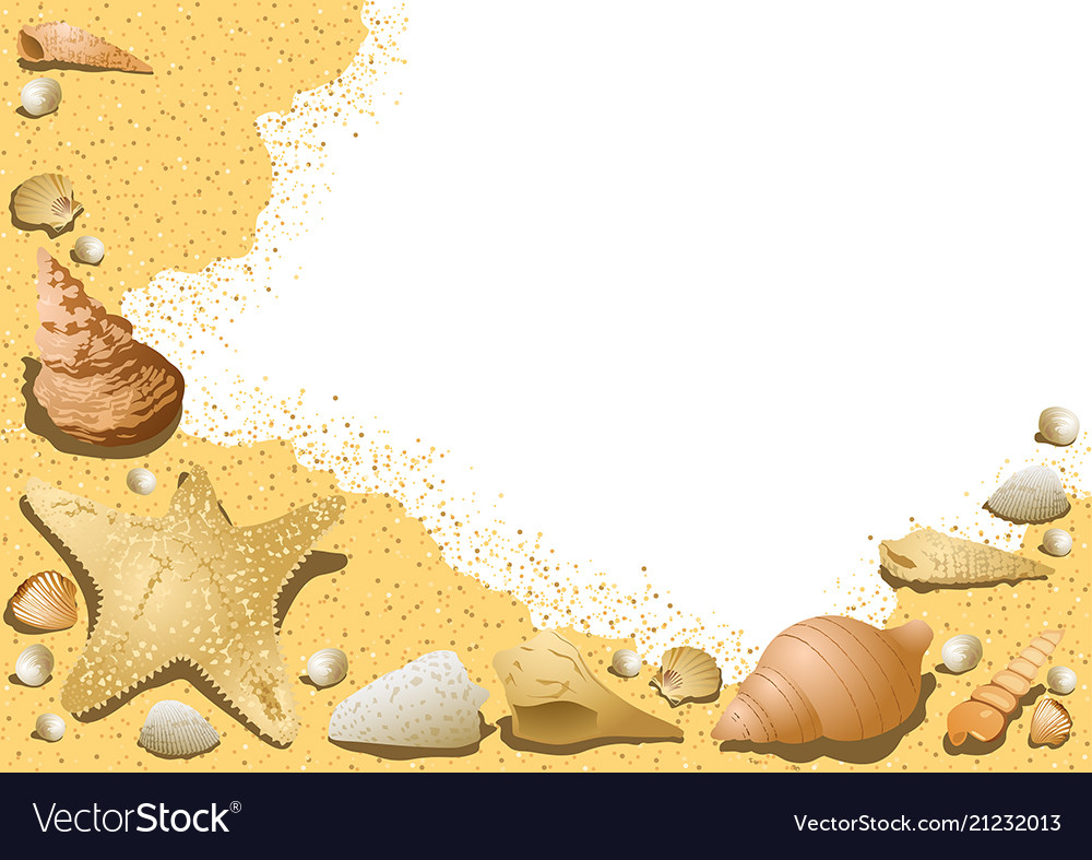 Sandy background with seashells
