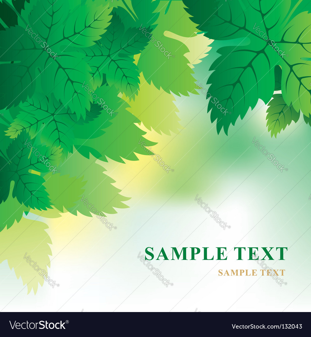 Soft Background With Grape Leaves Royalty Free Vector Image