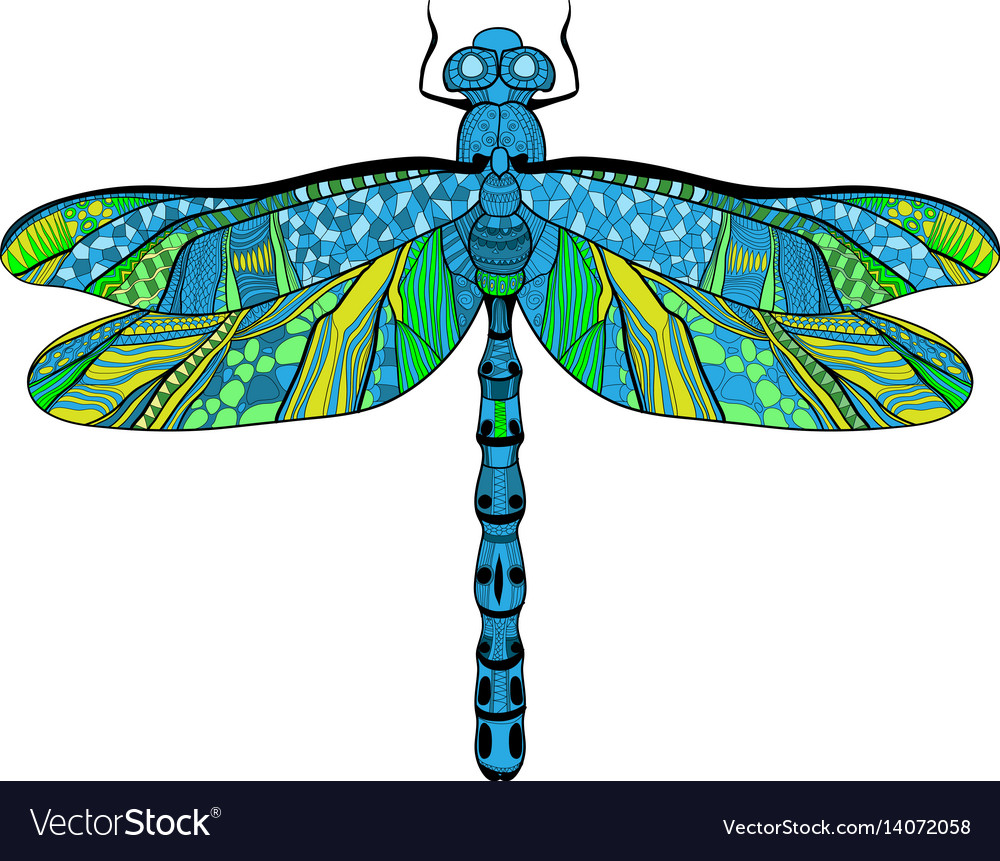 Beautiful bright dragonfly concept vector image