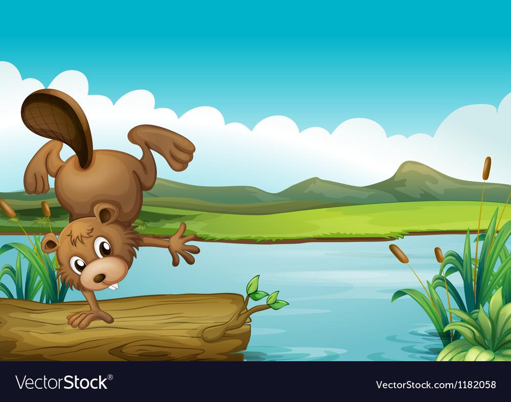Cartoon River Beaver vector image
