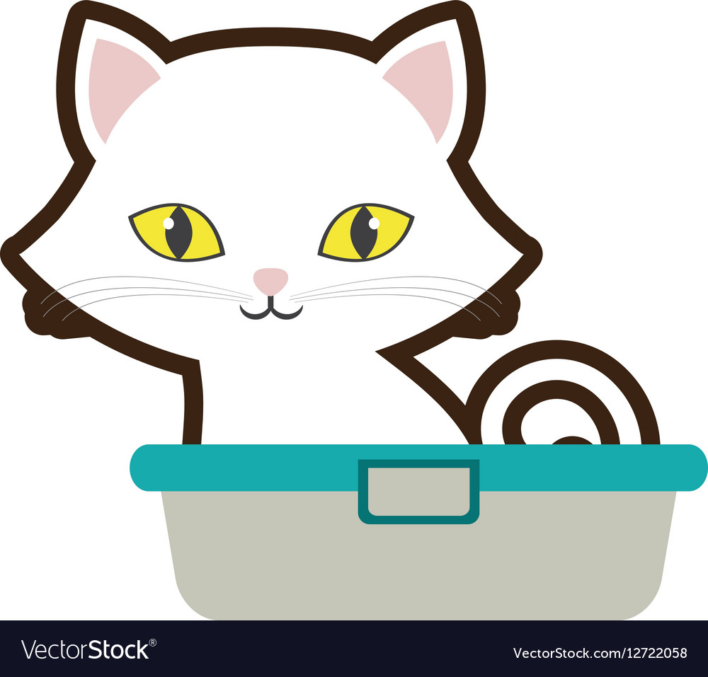 Small cat sitting yellow eyes bathtub