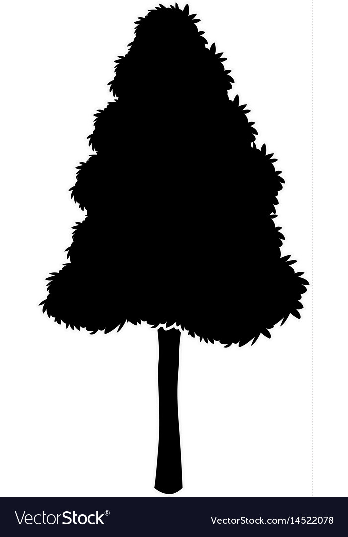 Black tree silhouette nature plant