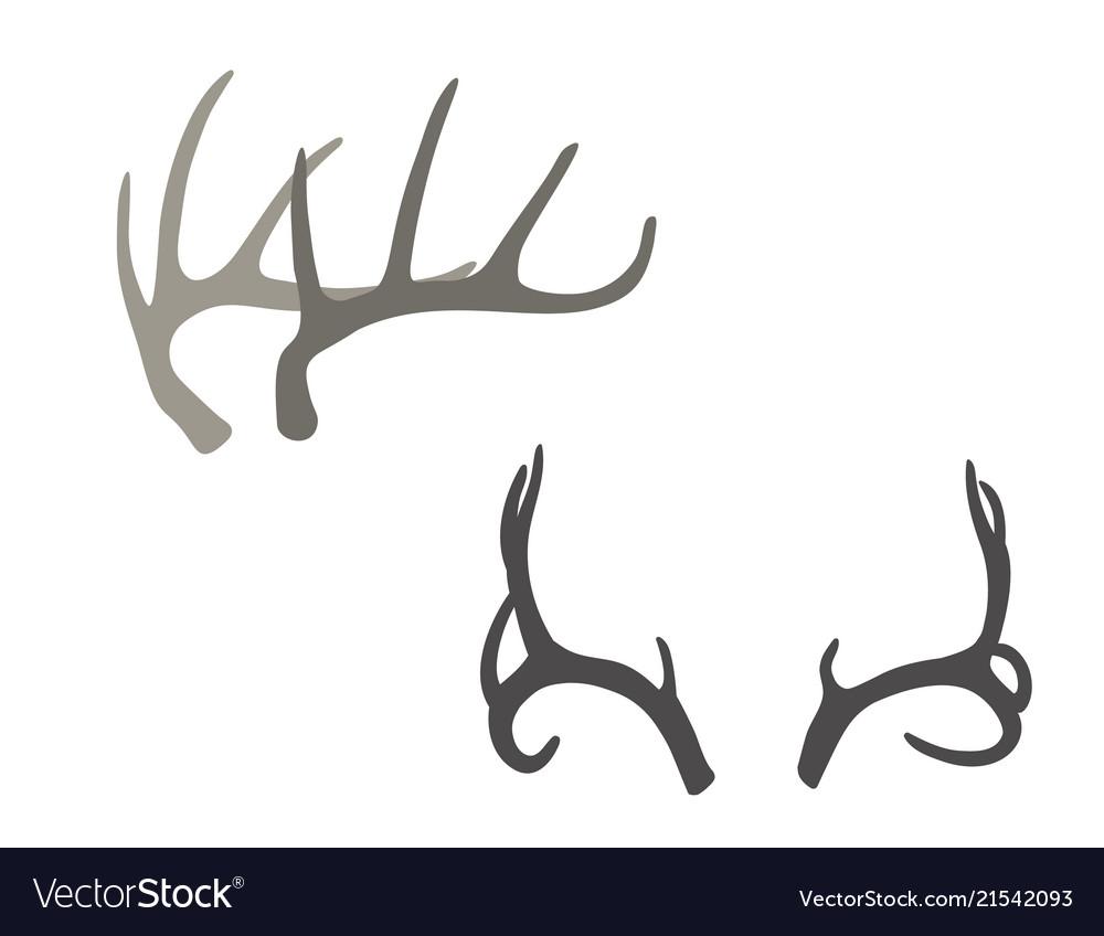 Deer antlers hand drawn boho