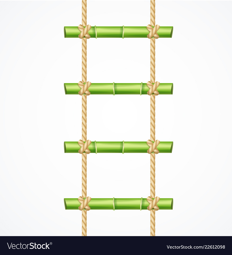 Realistic 3d detailed green bamboo ladder