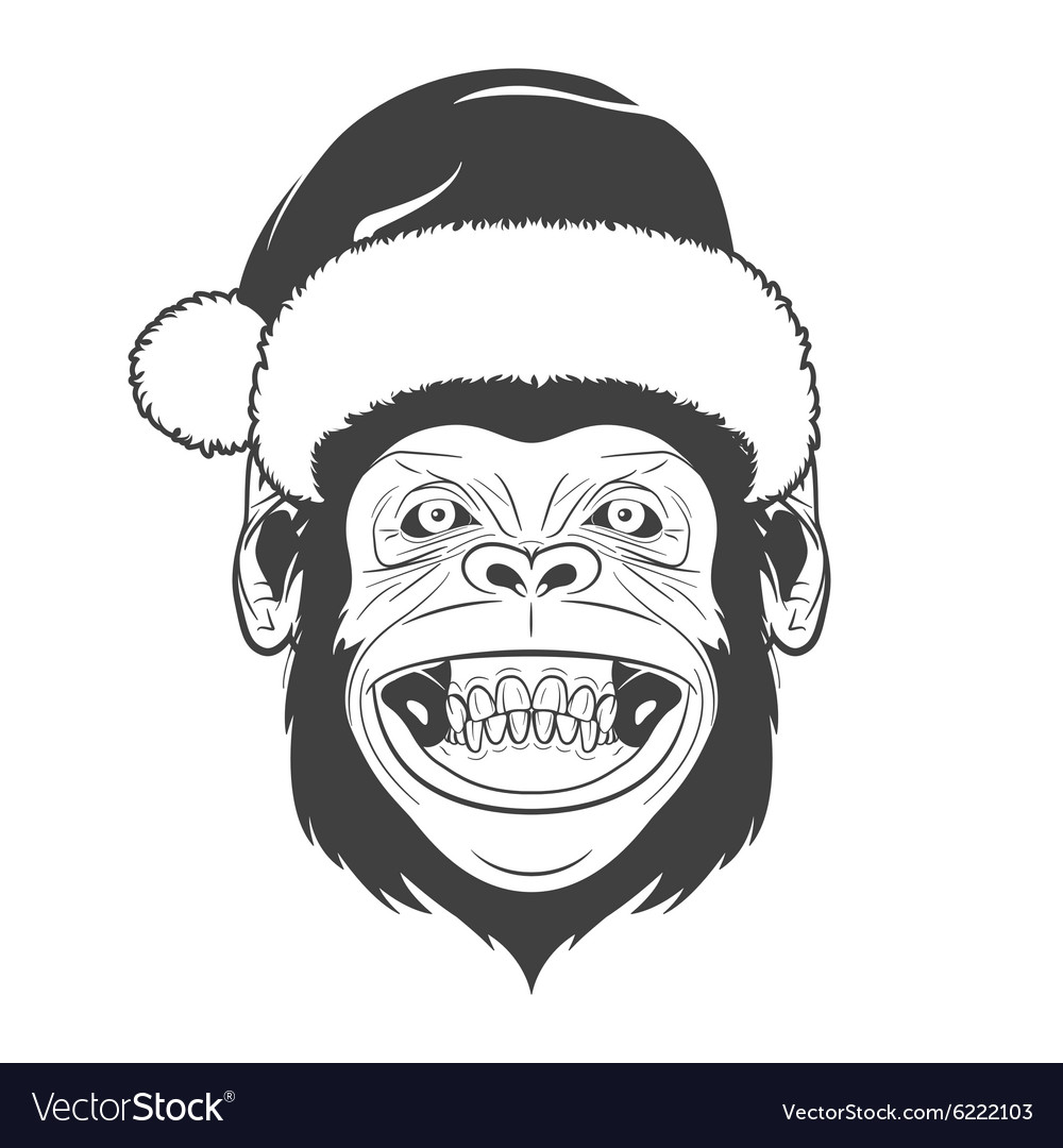 Monkey with santa hat
