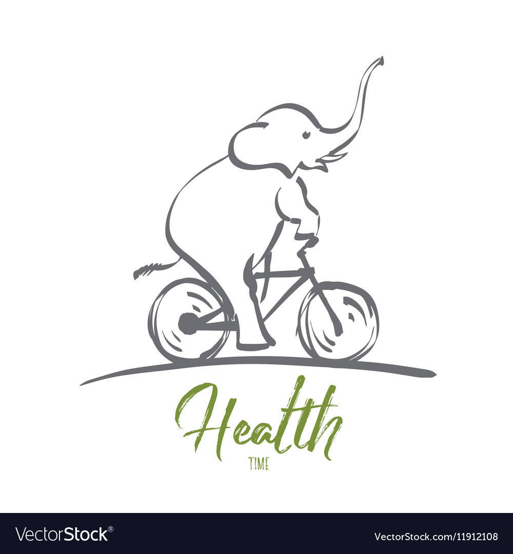 Hand drawn elephant riding bicycle with lettering vector image