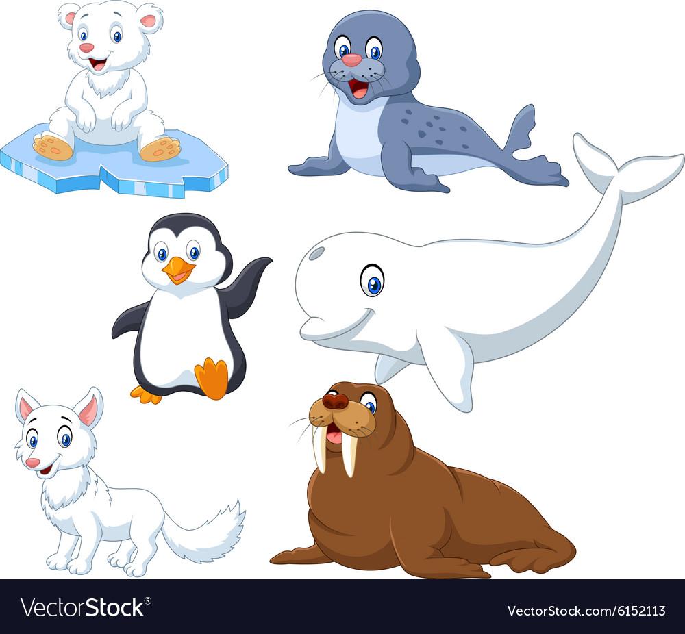 Arctics animals collection set