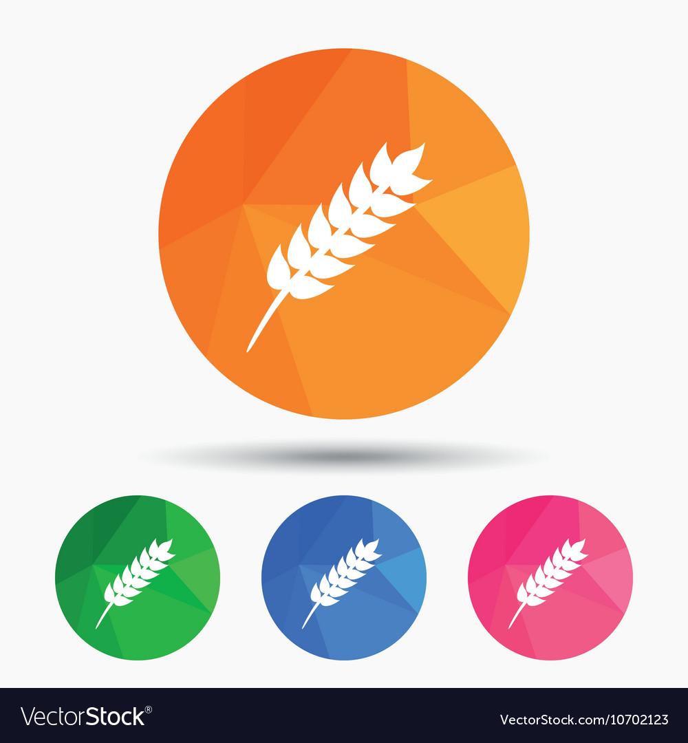 Gluten free sign icon No gluten symbol vector image on VectorStock