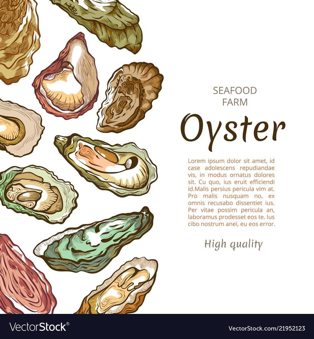 Oyster shell banner seafood farm banner template