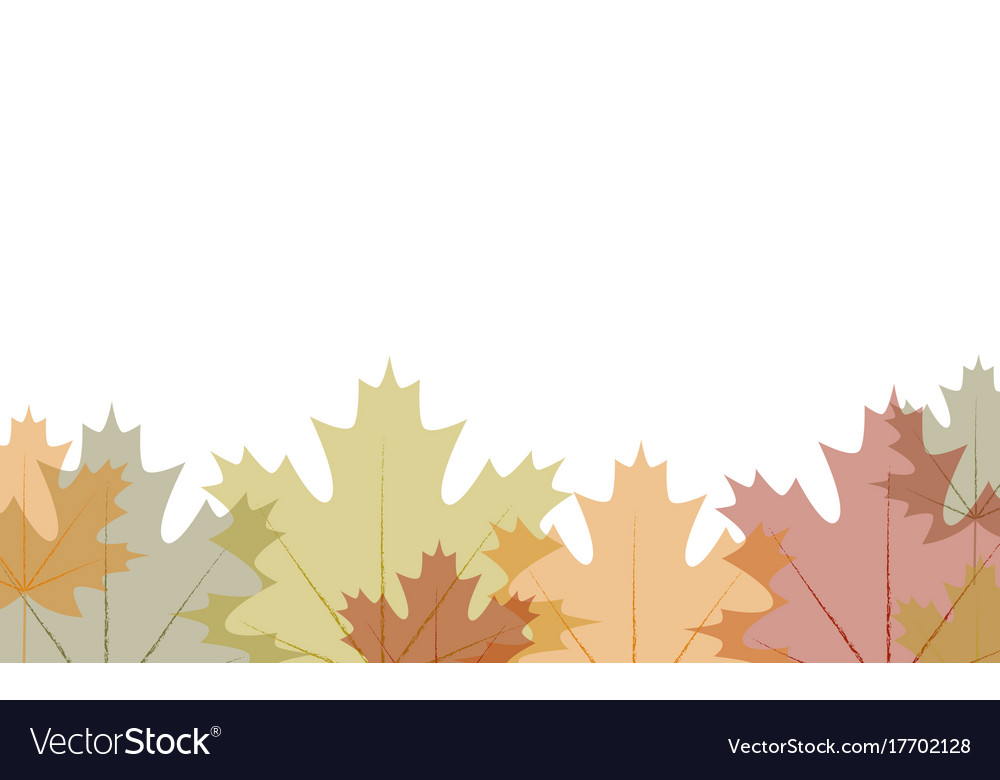 border transparent autumn leaves royalty free vector image