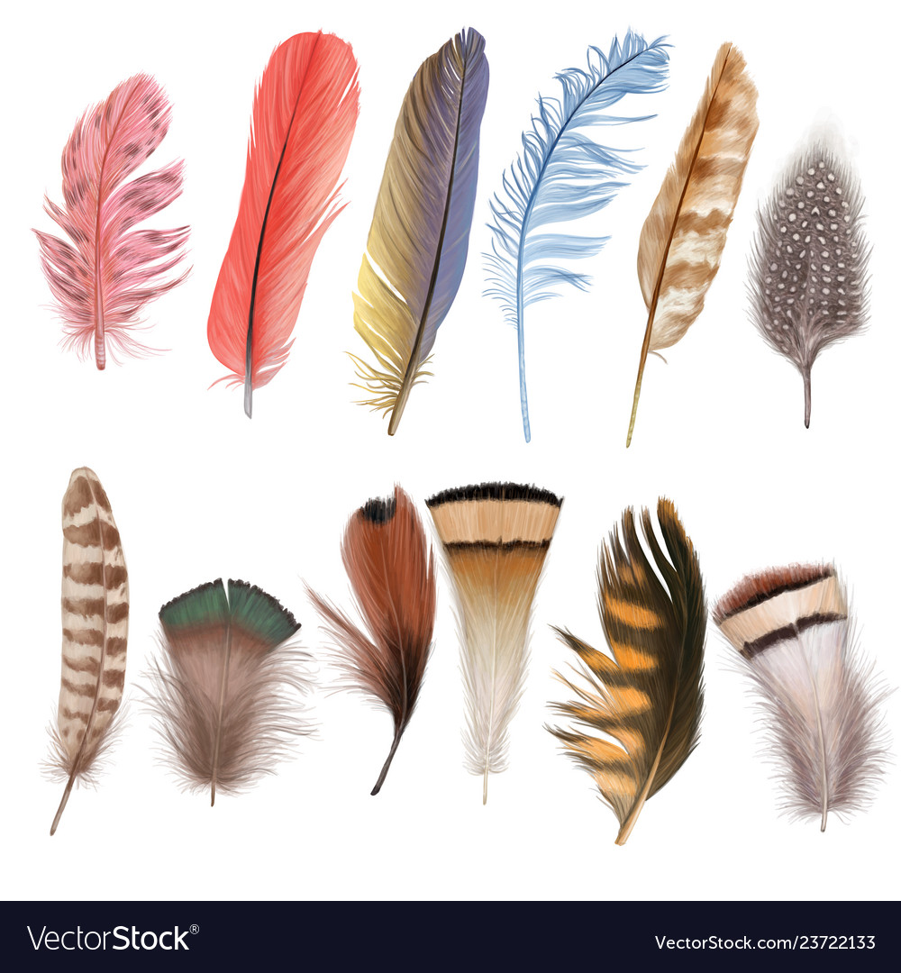 Marvelous fluffy feather set