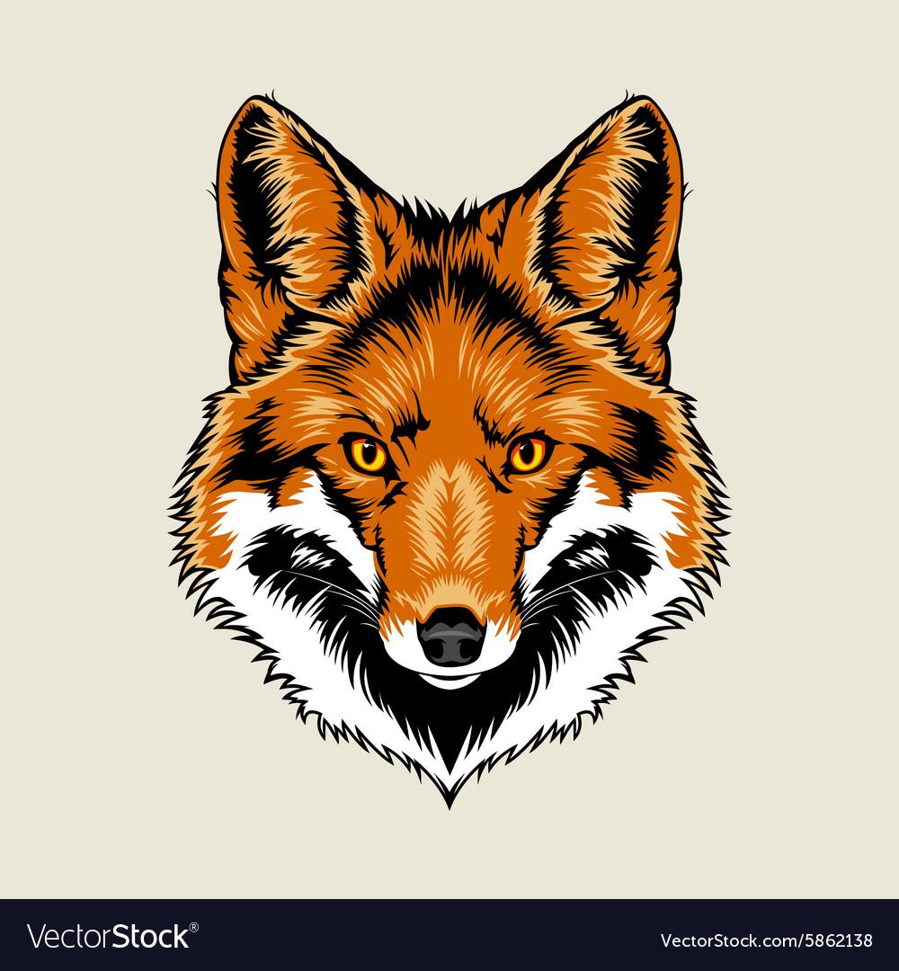 Red Fox Head Royalty Free Vector Image Vectorstock